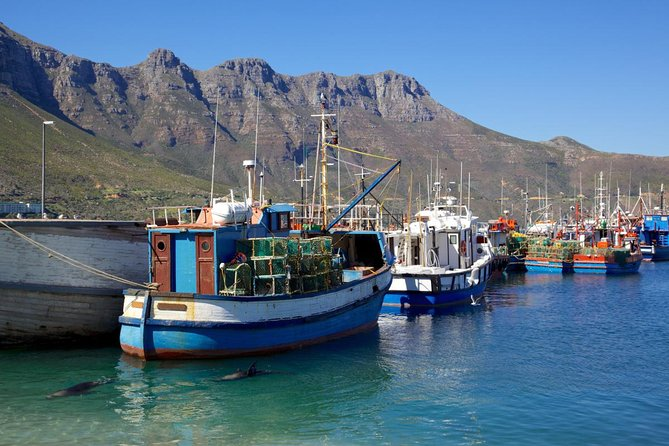Cape Peninsula Tour from Cape Town photo 6