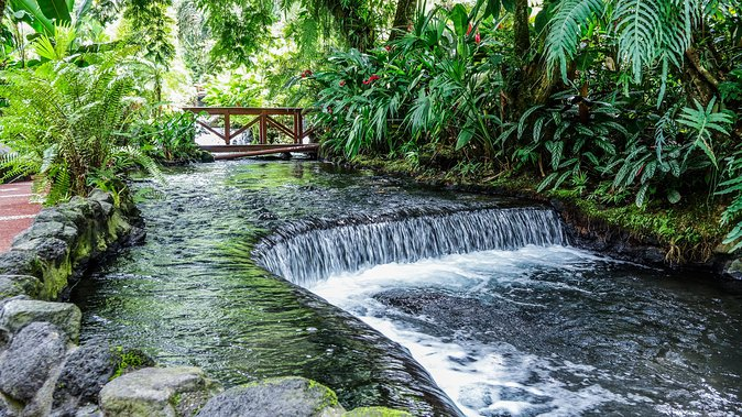 Combo Tour with Hanging Bridge,Waterfall,Volcano Hike and Tabacon Hot Springs photo 13