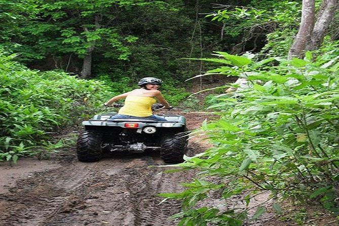 Canopy and ATV Tour