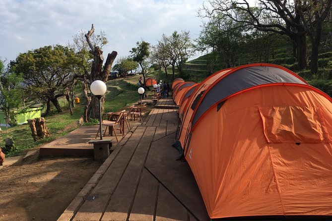 Overnight Camping Experience in Bali