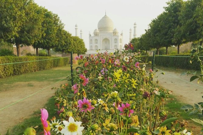 Private same day trip to Taj Mahal and Agra From Jaipur
