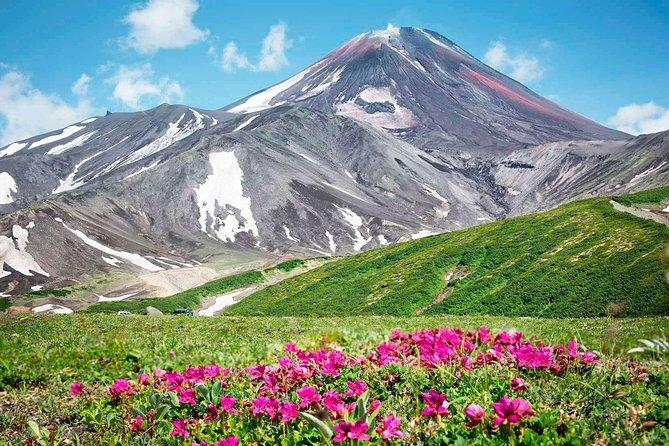 Kamchatka Private Day Tour: Trekking Avacha Volcanoes