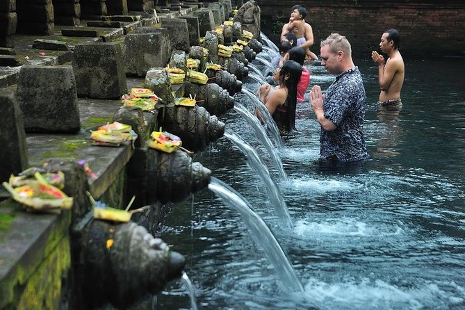 Holy Water Temple Experience and Ubud Highlight tour