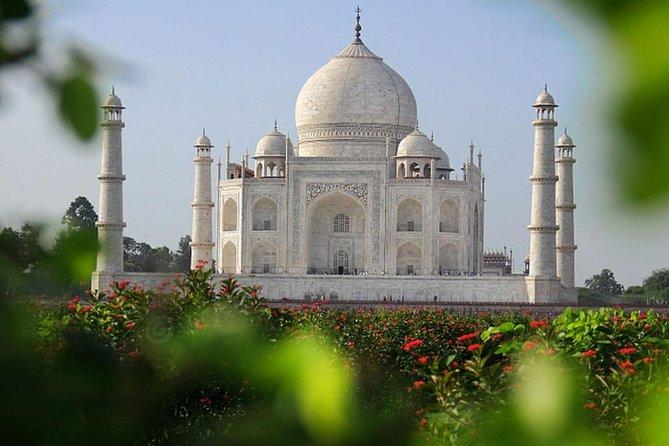 Private Taj Mahal Sunrise Full-Day Tour from Jaipur