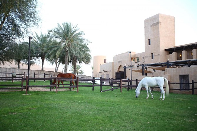 Horseback Riding in Dubai Desert