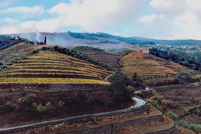 Vale do Ouro, incluindo almoço e viagem diurna para grupos pequenos com degustação de vinho e cruzeiro fluvial opcional