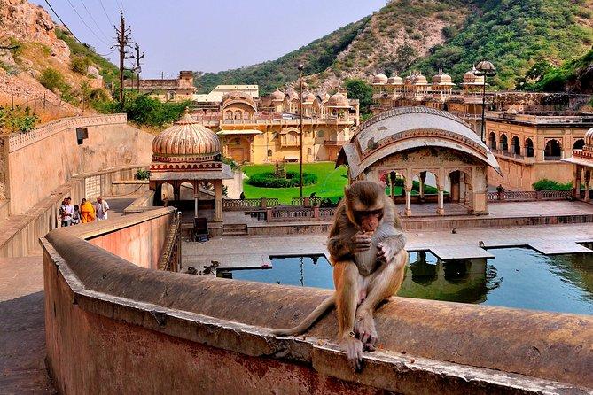 Hidden Gems of Jaipur (Guided Half Day City Tour)
