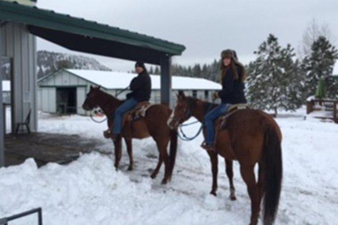 Winter Horseback Riding Adventure from Reno