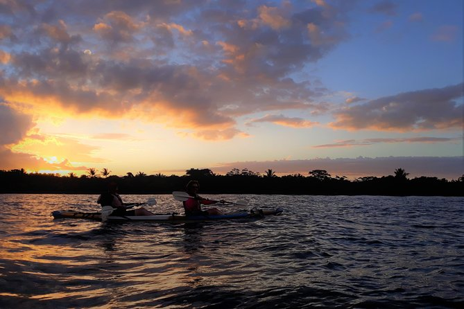 Mangroves, Sunset and Bioluminescence Kayak Tour