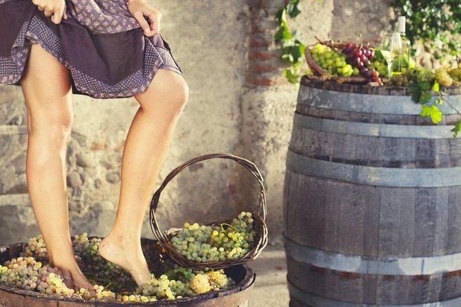 Grape stomping in Tuscan farmhouse photo 8