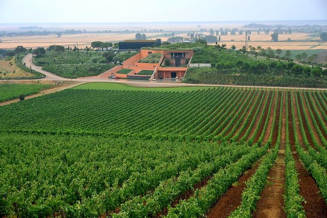Luxury Maremma Wine Tour
