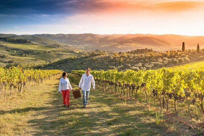 Great wine tour in Tuscany From Florence photo 16