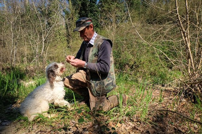 Truffle Hunting with Wine Tasting in Tuscan farmhouse