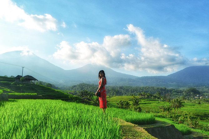 North Bali Highlight Instagram Tours Heritage Site