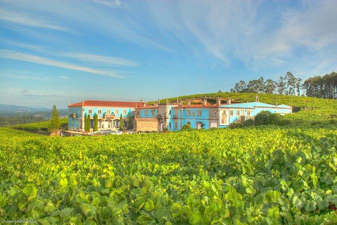 Albariño Private Wine Tour from Santiago de Compostela