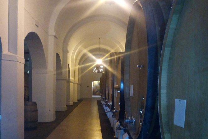 Évora Private Tour - Wine Tourism
