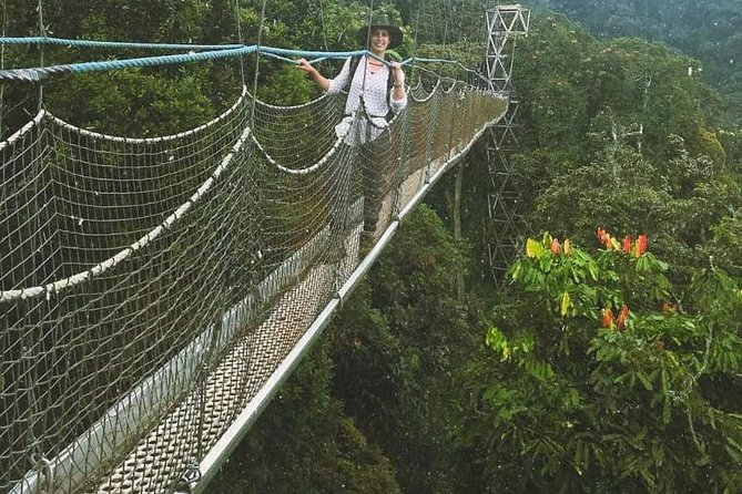 Canopy Walk Adventure and Lake Kivu Tour