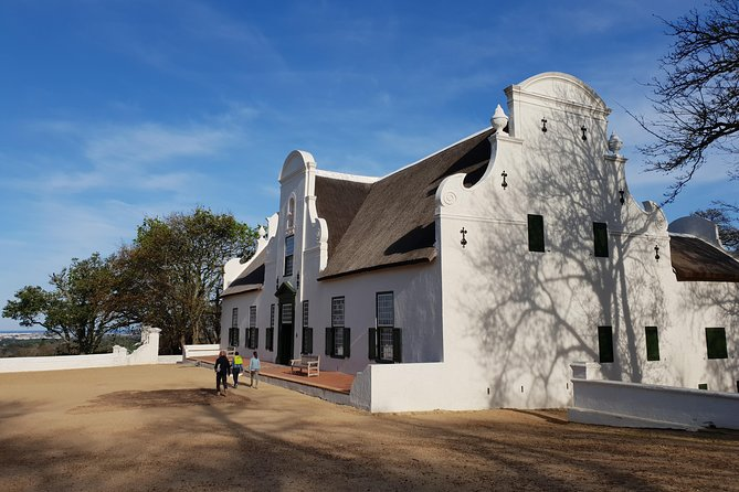 Constantia Vineyards Tour