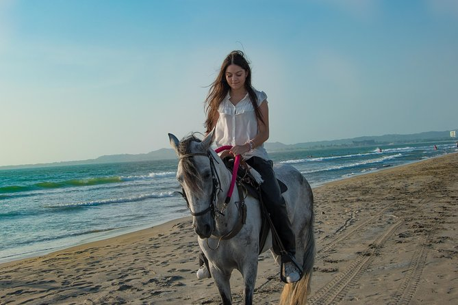 Horseback riding tour in beach of Cartagena