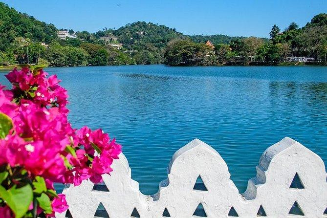 Kandy City Walks Relaxing City Tour