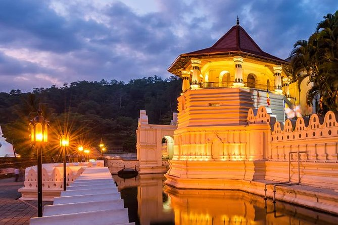Kandy, Peradeniya & Pinnawala Tour from Kandy