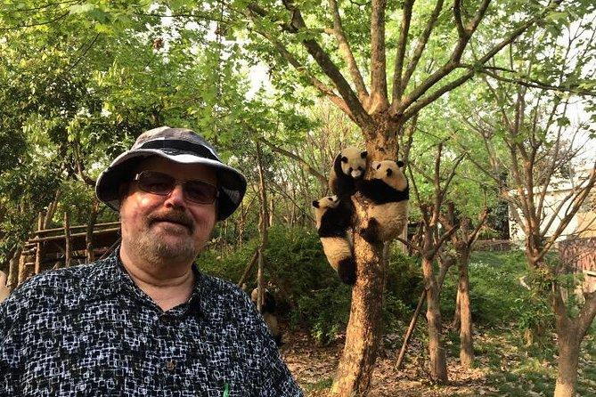 Chengdu Panda Base Half Day Tour
