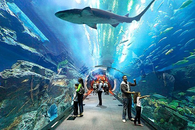 Pattaya Underwater World Aquarium