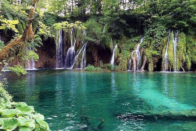 From Zadar Cruise Port: Plitvice Lakes Guided Tour
