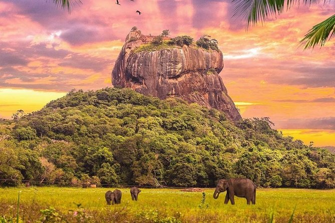 Kandy to Sigiriya Day Tour and Dambulla cave temple