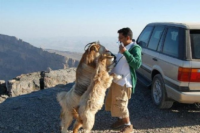 Jebel Shams Day trip (Muscat tours) :Oman Shore excursions