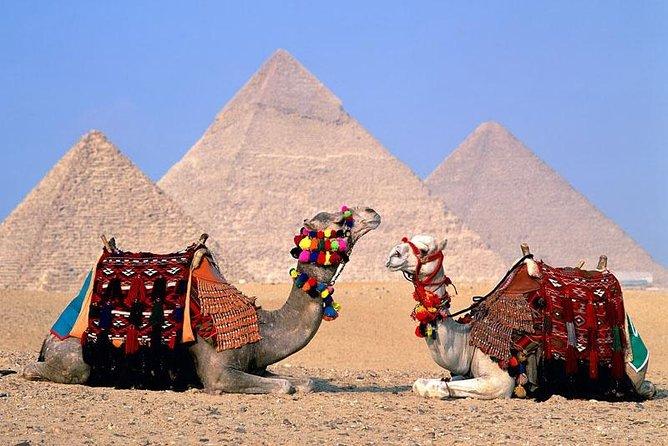 Half-day Tour to Pyramids & Sphinx