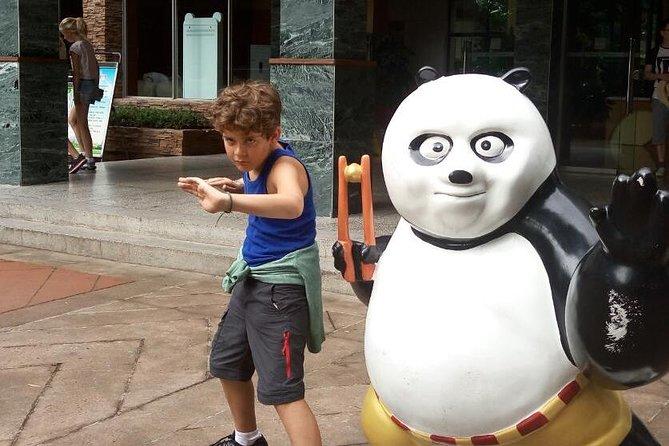 Chengdu Boutique Tour: Giant Panda e Highlights della città con pranzo incluso