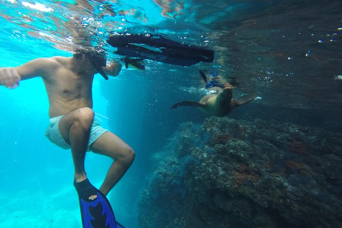 Snorkeling Adventure at Espiritu Santo Island National Park photo 1