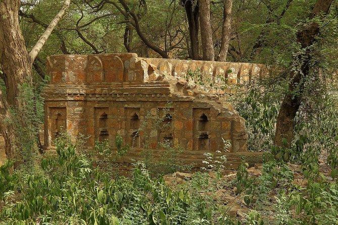 Delhi Urban & Heritage Adventures