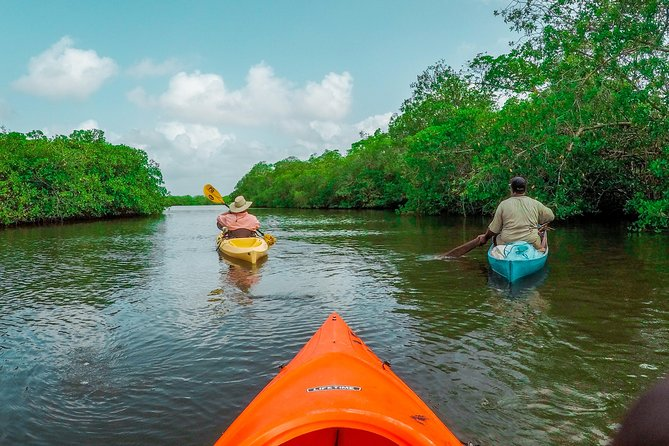 Belize Kayak, Fishing & Food Tour
