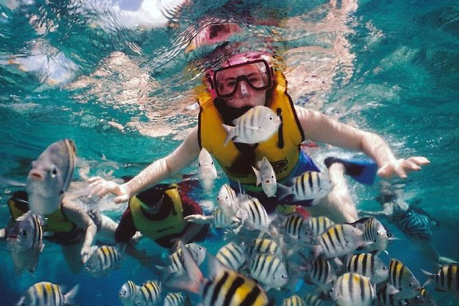 Bloo Lagoon Snorkeling East Bali With Transport and Lunch photo 9