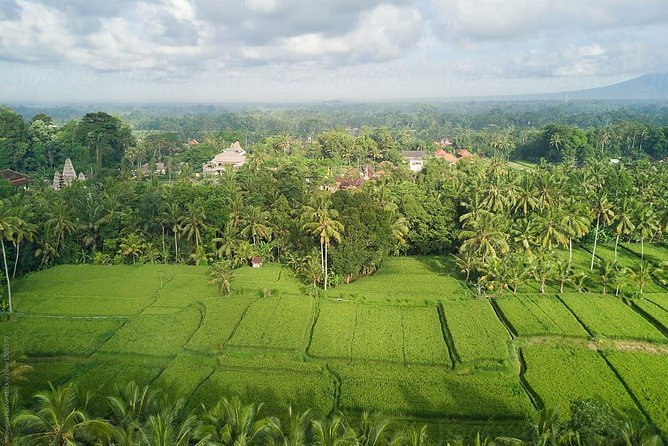 Ubud Village Cycling with 2 Hours Balinese Spa photo 6