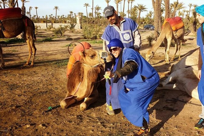 Sunset Camel Ride en el Palm Grove de Marrakech