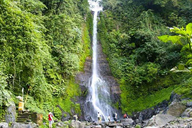 Amazing Private Tours: Dolphins Lovina and Gitgit Waterfall with Lunch