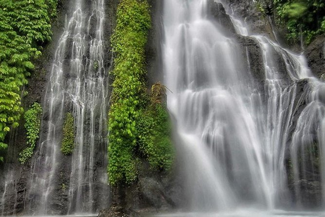 Private Full Day Trip Enjoy The Bayumala, Bali's Beautiful Waterfall! & Bedugul