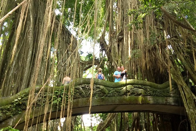 Bali Private Tour: Butterfly park,Monkey forest,and Temple