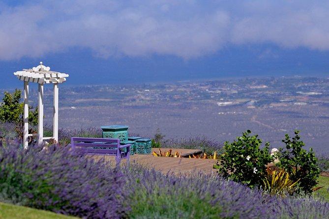 Amazing Upcountry of Maui Tour Explore Maui Sacred Place, Haleakala Farms & more
