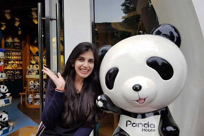 Chengdu Highlights Tour of Everything Panda Experience