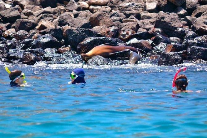"Full Day Santa Fe & "" Playa escondida"" snorkeling tour"