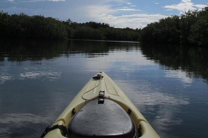 Sunset Kayak Tour in the Mangrove Lagoon, St Thomas