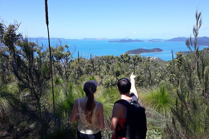 Scenic Guided Walk up Mt Rooper for Best Whitsunday Views from Airlie Beach