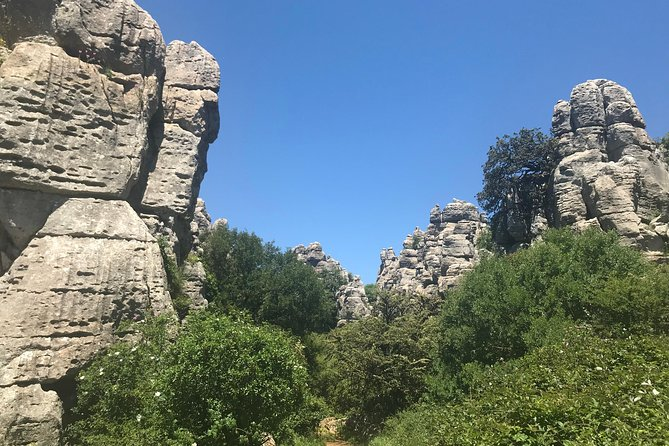Private Hiking Tour to El Torcal from Marbella or Malaga photo 3
