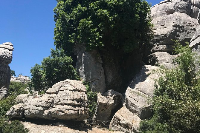 Private Hiking Tour to El Torcal from Marbella or Malaga photo 8