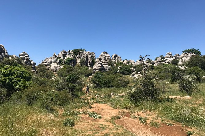 Private Hiking Tour to El Torcal from Marbella or Malaga photo 10