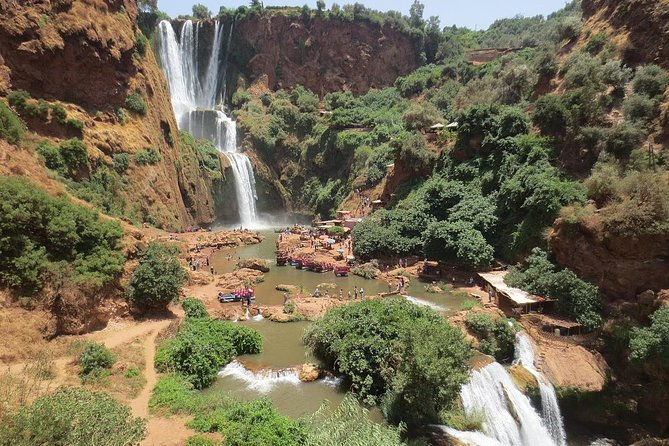 Full-Day Tour to Ouzoud Waterfall and Middle Atlas Mountain from Marrakech